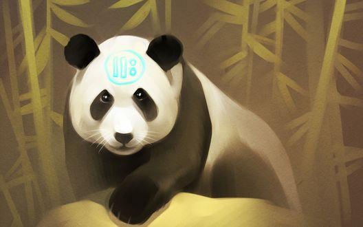 Обои Панда стоит возле бамбука