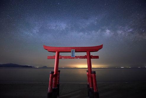 Обои Священные красные ворота Тории на берегу океана, Япония / Japan