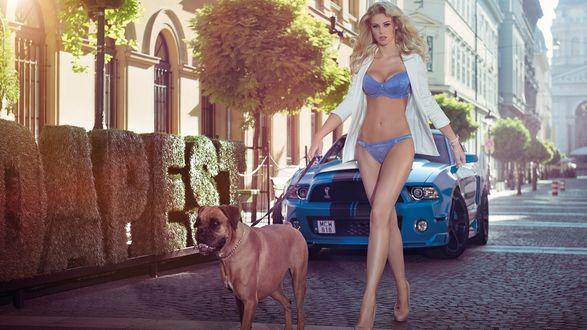 Обои Красавица блондинка с собакой на поводке на фоне голубого автомобиля на улице города