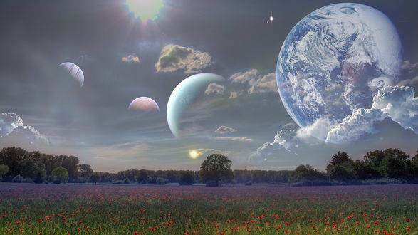 Обои Цветочное поле на фоне неба и планет