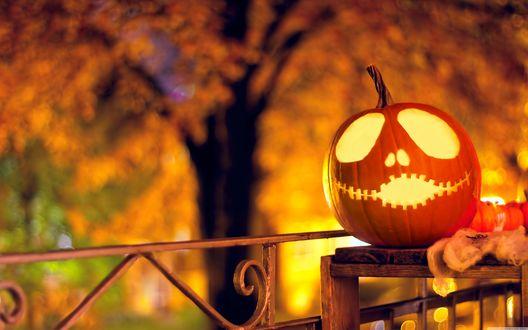 Обои Светящаяся тыква к празднику Хэллоуин