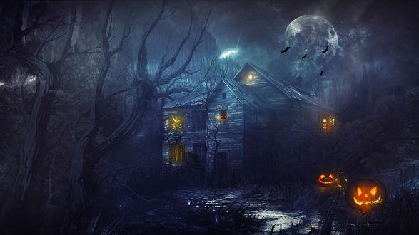 Обои Светящиеся тыквы лежащие вдоль дороги ведущей к старому дому в лесу, в одном из окон дома также видна тыква