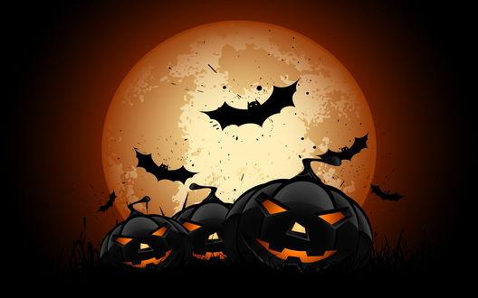 Обои Черные светящиеся тыквы Хэллоуина, на фоне полной луны и летучих мышей
