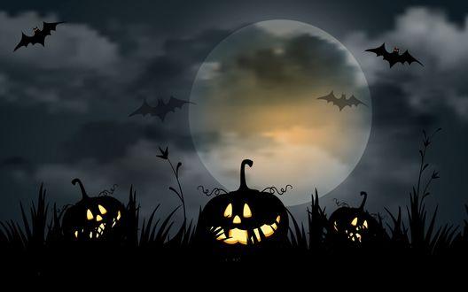 Обои Злые тыквы Хелоуина лежат на траве, на фоне ночного неба и луны