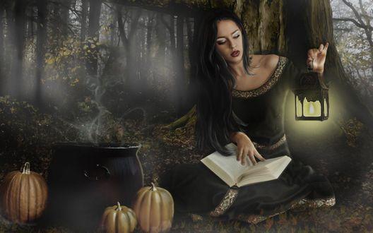 Обои Ведьма колдует с помощью книги на Halloween, рядом с котлом лежат тыквы