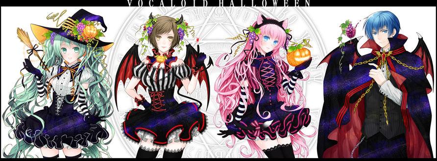 Обои Вокалоиды: Хацунэ Мику / Hatsune Miku, Сакинэ Мэйко / Sakine Meiko, Мегуринэ Лука / Megurine Luka и Шион Кайто / Shion Kaito в костюмах на Хэллоуин (Vocaloid Halloween)