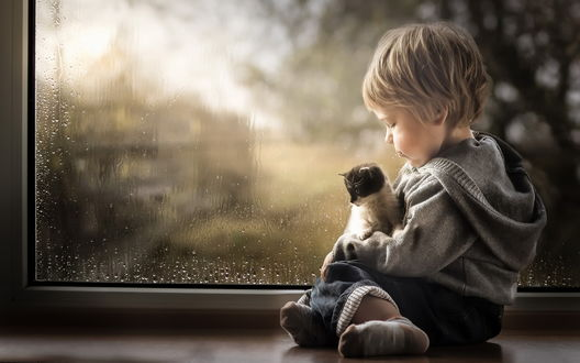 Обои Мальчик с котенком на руках сидят у окна, за которым идет дождь