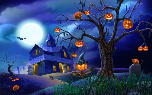 Обои Пугало в шляпе стоит у дерева на котором висят светящиеся тыквы и много летучих мышей, под деревом на могильной плите сидит чертенок в виде кошки на фоне неба, полной луны и дома с приведениями