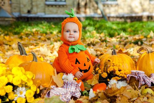 Обои Маленький ребенок нарядился в костюм тыквы, сидит среди осенней листвы и тыкв