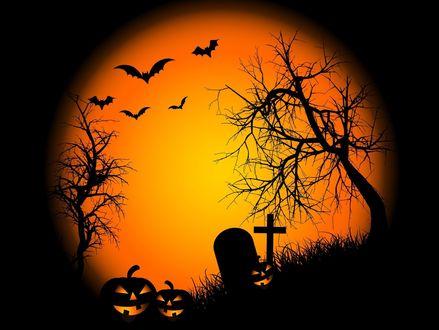 Обои Ночь Хеллоуина, тыквы стоят на кладбище, около могилки с крестом и рядом растущих деревьев. на небе летают летучие мыши