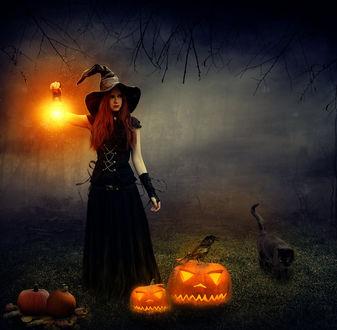 Обои Ведьма с фонарем в руке стоит возле тыкв и смотрит в сторону, by Ignis Souls