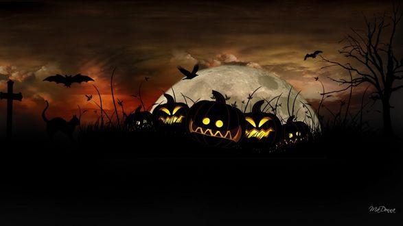 Обои Мрачные тыквы лежат в траве на воне луны, возле креста бродит кот, летают вороны и летучие мыши, автор MyDanna
