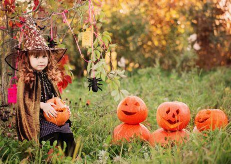 Обои Маленькая девочка, нарядилась к Хэллоуину в костюм колдуньи, сидит около деревьев, держа тыкву в руках