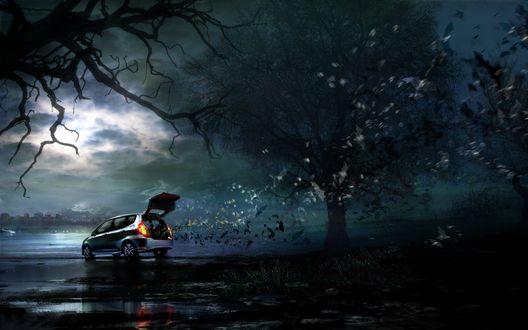 Обои Во мраке ночи среди деревьев стоит загадочный автомобиль с открытым багажником