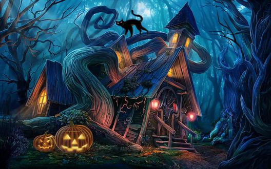 Обои Фонарики Джека у дома с приведениями, по крыше которого гуляет черный кот