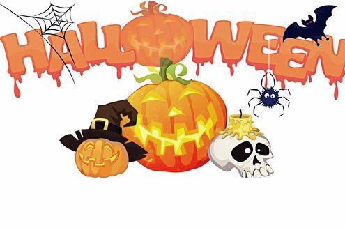Обои Праздничный арт состоящий из тыкв, черепа со свечкой, паутины, паука, летучей мыши и кровавой надписи Halloween / Хеллоуин с тыквой вместо буквы o