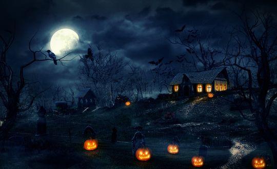 Обои Ночное кладбище, домик на холме, деревья растущие рядом, вороны сидят на ветвях, летучие мыши летают над домиком