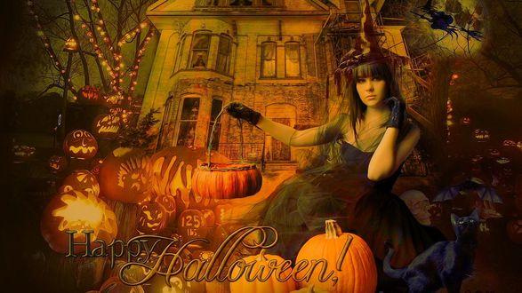 Обои Девушка с корзинкой в руке виде тыквы сидит возле черного кота, на фоне старинного дома