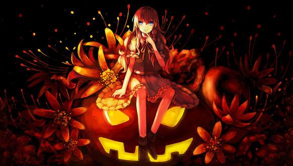 Обои Kirisame Marisa / Мариса Кирисамэ из Тохо / Touhou project сидит на тыкве, среди огненных цветов, на Хэллоуин / Halloween