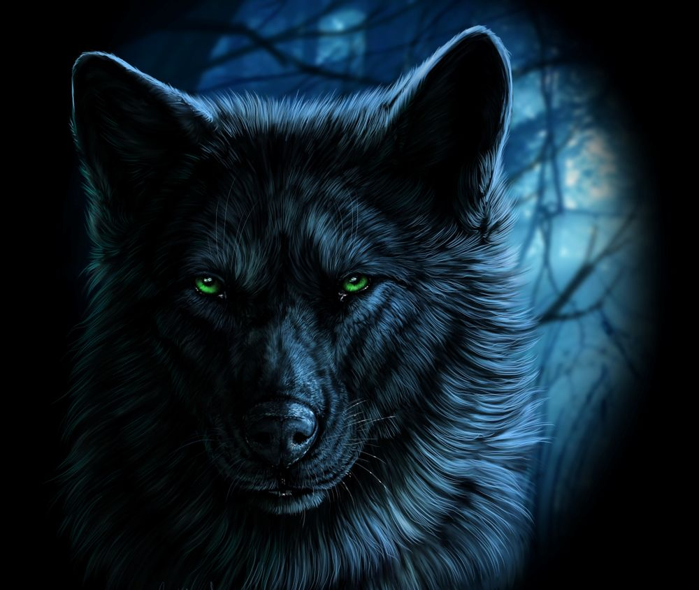 Волки картинки на аву