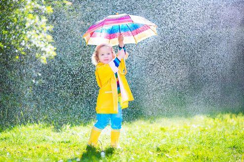 Обои Маленькая, ярко одетая девочка стоит под зонтиком на лужайке во время дождя