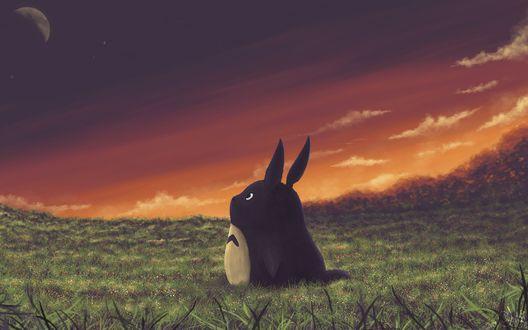 Обои Забавное существо Тоторо, стоит в поле, из аниме мультфильма Мой сосед Тоторо / My Neighbor Totoro