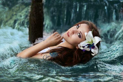 Обои Девушка с белой лилией в волосах и с тату на плече стоит в воде и смотрит на нас, фотограф Алена Иордан, модель Екатерина