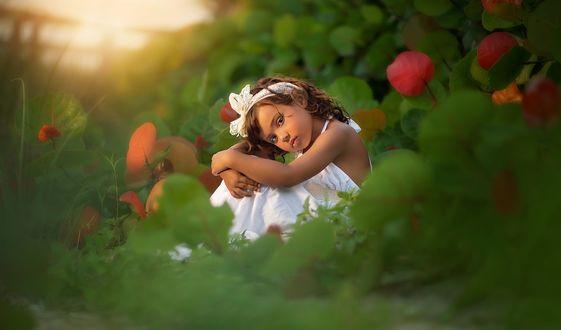 Обои Маленькая, миленькая девочка, в белом платье и с бантиком на голове, сидит в траве на фоне крупных листьев