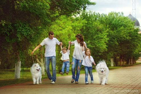 Обои Счастливая семья, прогуливается с двумя собаками вдоль аллеи по брусчатой дороге, фотограф Максим Николаев