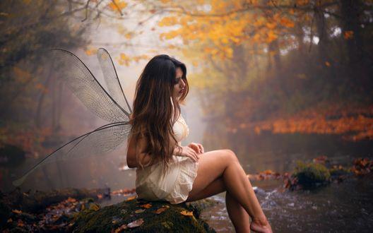 Обои Девушка в белом платье и с крыльями стрекозы за спиной сидит, спустив ноги к реке