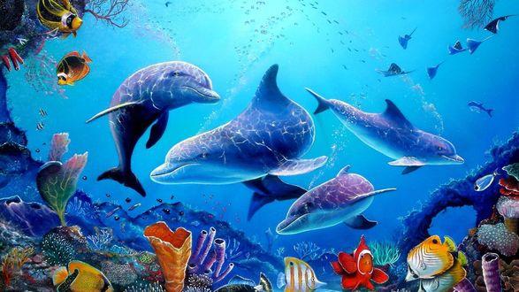 Обои Дельфины с рыбками в на дне океана