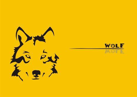 Обои Рисунок мордочки волка на желтом фоне с надписью Wolf