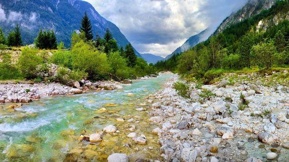 Обои Горная река на дне ущелья