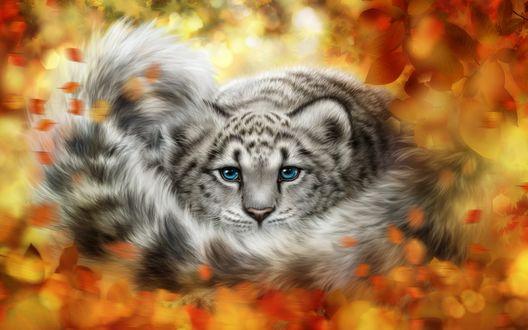 Обои Леопард лежит в осенних листьях