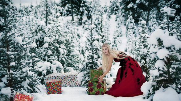 Обои Девушка в красном плате кладет подарки под елку
