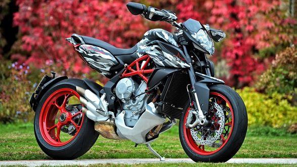 Обои Мотоцикл MV Agusta Rivale 800 Urban Camo