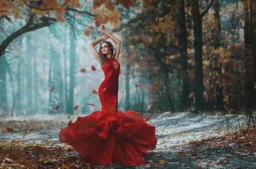 Обои Девушка в красном платье с пышной юбкой стоит на аллее в осеннем парке