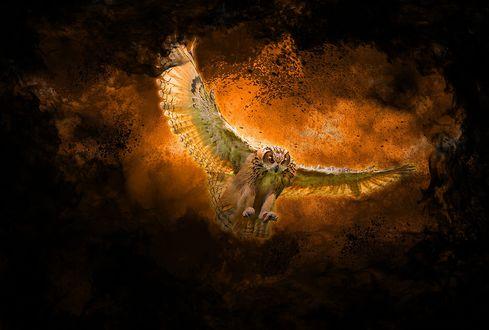 Обои Арт сова улетающая от огня и дыма, by Waylin