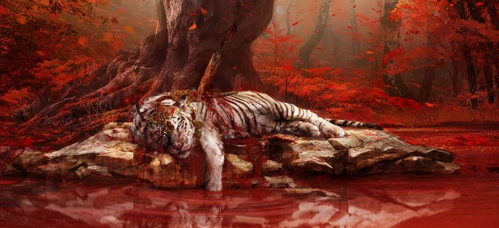 Обои Раненый белый тигр лежит на берегу водоема, арт по игре Far Cry 4