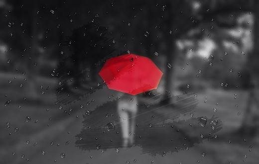 Обои Силуэт человека с красным зонтом за мокрым стеклом