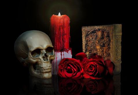 Обои Череп лежит рядом с горящей свечой, красными розами и книгой на черном фоне