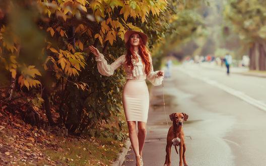 Обои Улыбающаяся девушка идет по улице с собакой на поводке и смотрит на пожелтевшую листву на деревьях