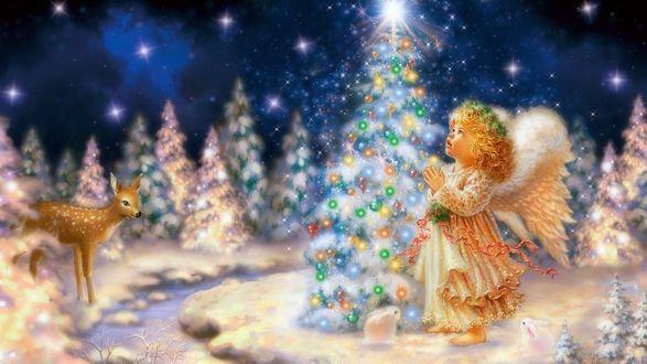 Обои Ангелочек у рождественской елочки в лесу
