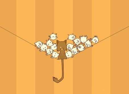 Обои Кот сидит на проводе, на полосатом оранжевом фоне, на него скатываются белые птички