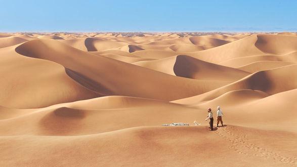Обои Игрушечные человечки и собачка, стоят у скелета животного на фоне песчаных дюн