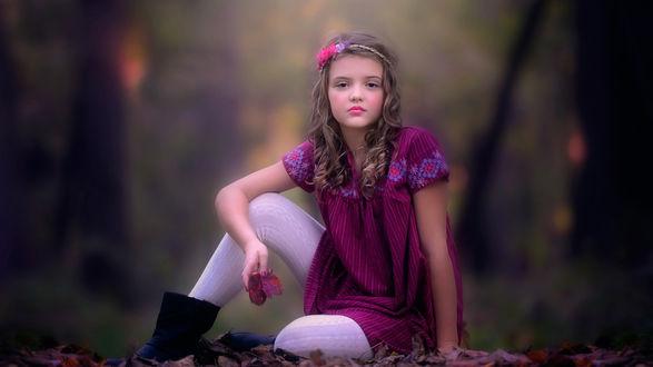 Обои Девочка в бордовом платье сидит на земле в опавших листьях на фоне природы