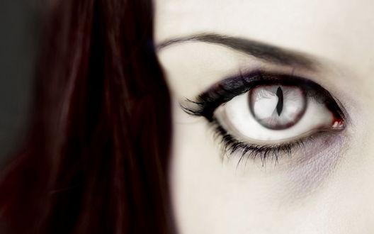Обои Глаз вампирши с суженными зрачком