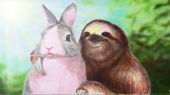 Обои Ленивец обнимает кролика
