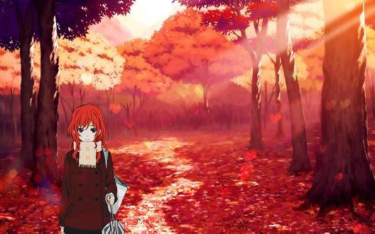 Обои Maki Nishikino / Маки Нишикино, идет по тропинке в осеннем лесу