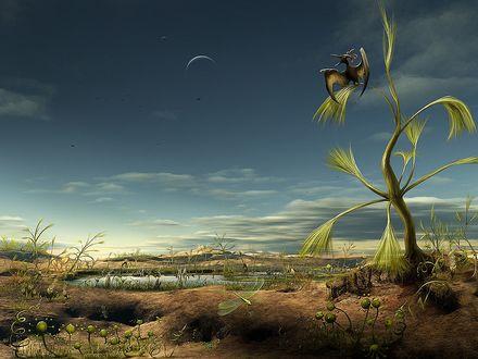 Обои Не существующий мир, на земле почти нет растений и обидают странные птицы, родственники динозавров